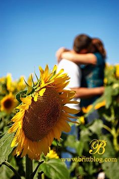 I have always known it was you. #CreatingEmotions  www.galleriafarms.com                                                                                                                                                      More