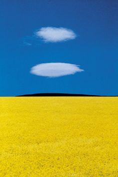 Franco Fontana, The Magic of Color.