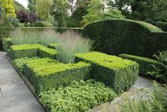 Formal Gardens, Small Gardens, Plant Design, Garden Design, Green Architecture, Garden Features, Parcs, Cool Landscapes, Dream Garden