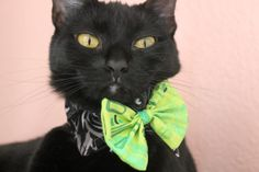 Modern Christmas Bow Tie Collar for Cat