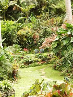 Step into the magical world of Hunte's Gardens in #Barbados and be transported to a tropical paradise!