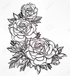 Vintage floral highly detailed hand drawn rose flower stem with..