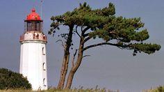 """So wurde noch nie über die untergehende DDR erzählt. Eine Fahrt nach Hiddensee mit Lutz Seiler, der mit seinem grandiosen Roman """"Kruso"""" der Insel ein Denkmal gesetzt hat."""