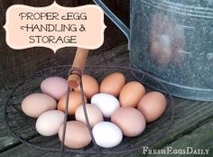 Excellent post from Fresh Eggs Daily®: Handling and Storing Eggs