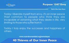Purpose 1047 Envy