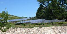 Solar Panels at Tablas Creek Vineyards.  #organic, #biodynamic, #green, #sustainable, #eco, #ecofriendly, #natural, #wine, #vineyard, #solar