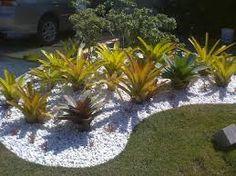 25 Mejores Imagenes De Jardines Con Bromelias Con Piedras
