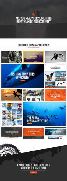 Transfer the excitement and the adrenaline rush adventure sports provide straight to the screen with Freestyle, an exhilarating WordPress theme for extreme sports! Packed with layouts for various sports & events, Freestyle is your perfect choice! Tuna Fishing, Sports Website, Home Sport, Sports Clubs, Sports Extrêmes, Cycling Art, Adventure Tours, Famous Last Words, Vintage Bicycles