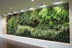 Beautiful Vertical Garden Indoor Plants