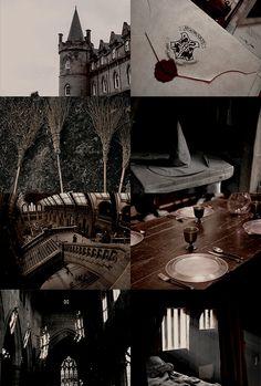 "Wizarding Schools Aesthetic | Hogwarts 1/2: ""Draco Dormiens Nunquam Titillandus """