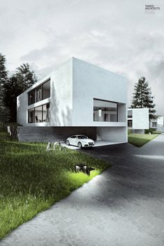 Single damily house modern