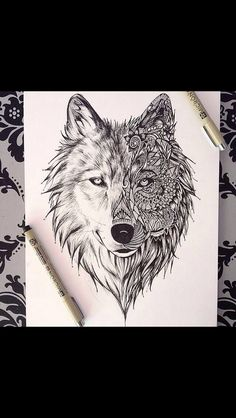 Little wolf..