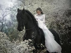 I love the idea of the bride arriving on horseback.