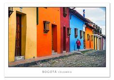 Hola cachorros,  La tía Flora estuvo en Bogotá. Una ciudad preciosa rodeada de mucha alegría.