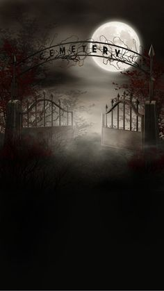 Foggy Cemetery Photography Backdrop by Photo Pie