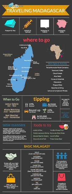 Madagascar Travel Cheat Sheet; Sign up at www.wandershare.com for high-res images.