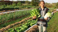 Какво е включващо фермерство и защо храните там са #био? http://www.zdravnitza.com/a/nav/news/s/s/news_id/6315