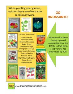 Monsanto has been buying up seed companies for over a decade. Buying organic doesn't necessarily mean you're buying non-Monsanto. These seed companies are not owned by Monsanto.