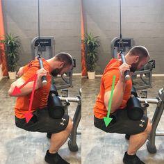 Links sieht man ein sehr häufiges Bild, der Ellenbogen bzw. der Arm wandert beim Herunterziehen nach hinten. Dadurch ist nicht mehr der Latissimus der Muskel, der die meiste Arbeit verrichtet, sondern es verschiebt sich auf die Muskeln im Schulterbereich. Weiterhin kann es zu einer Schädigung in der Schulter kommen! Rechts sieht man die optimale Ausführung, der Arm und der Ellenbogen sind in einer Linie mit dem Oberkörper, dadurch ist eine optimale Stimulation des Latissimus möglich