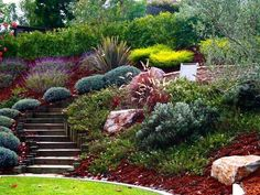 Landscaping A Steep Sloped Backyard Best Landscaping A Slope Images On Ideas Regarding Sloped Backyard Design Steep Sloped Backyard Landscaping Ideas Steep Hillside Landscaping, Sloped Backyard Landscaping, Terraced Landscaping, Landscaping On A Hill, Sloped Yard, Hillside Garden, Modern Landscaping, Landscaping Ideas, Sloping Garden