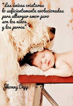 Las únicas criaturas lo suficientemente evolucionadas para albergar amor puro son los niños y los perros
