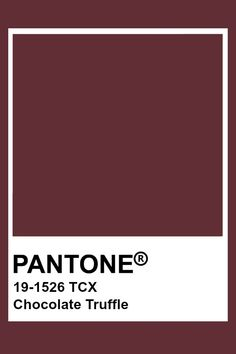 Pantone Colour Palettes, Pantone Color, Color Box, Colour Board, Pantone Tcx, Chocolate Truffles, Hot Chocolate, Textiles, Color Stories