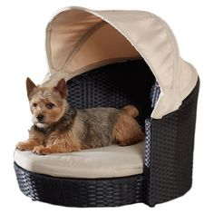 Indoor/outdoor pet bed.  Product: Pet bedConstruction Material: Wicker and fabricColor: Black