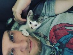Hold on to your ovaries ladies lest they explode  #selfie #kitten #cat #cute #lazysaturday #thor #latepizza by late_pizza http://www.australiaunwrapped.com/