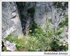 Transylvanian Adventures Team - Carpathian Adventures - Egynapos túrák