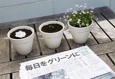 Jornal e lápis sustentáveis são grandes aliados na preservação do meio ambiente