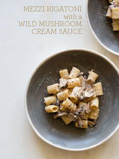 wild mushroom mezzi rigatoni cream sauce