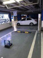 Tesla Türkiye , Elektrikli Otomobil Dünyası