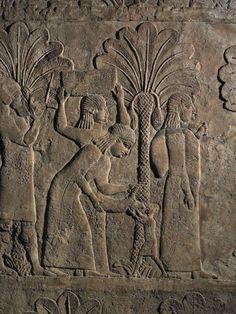 I giardini di Mesopotamia – Café des Arts Ancient Persia, Ancient Egyptian Art, Ancient Aliens, Ancient History, Ancient Greece, History Of Wine, European History, Art History, American History