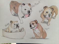 I just finished my first #bulldog collage for an Etsy client of mine. If u would like a portrait of your English bulldog then visit my etsy store at www.etsy.com/shop/artisticbulldog