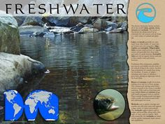 POSTER: Pictures and text describe the diverse freshwater biome which includes lakes, rivers, ponds streams and wetlands. Includes a map. Salt And Water, Fresh Water, Science Curriculum, Poster Pictures, Biomes, Water Systems, Children's Literature, Ponds, Student Learning