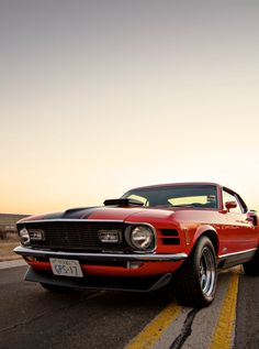 Mach 1 with quart panels Ford Mustang 1964, Ford Mustang Shelby Cobra, Ford Mustang Fastback, Ford Shelby, Mustang Cars, Car Ford, Ford Gt, Ford Mustangs, Mustang Convertible