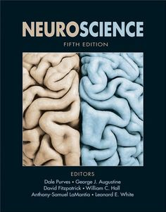 This classic textbook guides students through the challenges and excitement of the rapidly changing field of neuroscience. Accessible for both medical students and undergraduate neuroscience students, the 5th edition has been updated throughout to reflect the latest developments.