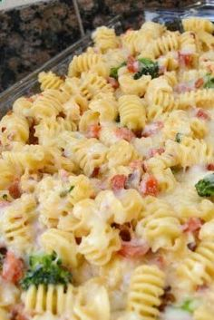 Alfredo Pasta Bake Recipe ~ Its so delicious and sure to please your picky eaters!