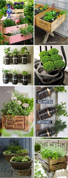 Neat Shabby Chic Country Style Recycles Items for Planting