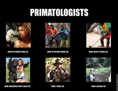 the truth about primatology