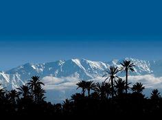 Atlas Mountains from La Palmeraie Marrakech
