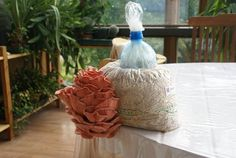 Pilzzucht im Haus: Rosenseitling aus vergorenem Stroh in einer Tüte, verschlossen mit Flaschenhals, gefüllt mit Watte