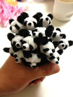A pack of pipe cleaner pandas, otherwise known as an embarrassment of pandas, or a cupboard :p