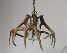 Deer Antler Sheds Chandelier Entry Way Lighting Fixtures, Dining Light Fixtures, Country Decor, Rustic Decor, Antler Lights, Deer Antler Chandelier, Deer Antler Crafts, Deer Decor, Deer Horns