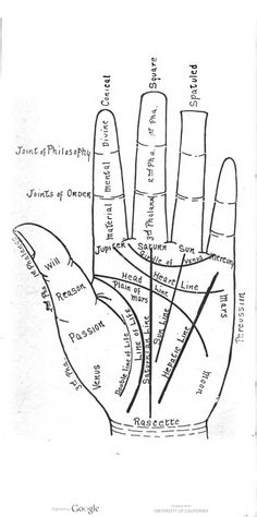 A palm reading diagram, in A Guide to Palmistry, by Eliza Easter-Henderson.