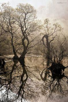 Morning of  Jusan lake by Jaewoon U on 500px