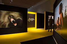 national geographic museum - Google Search