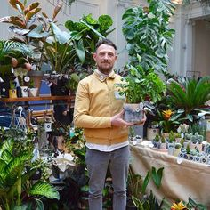 Interactive Activities, Green Rooms, Website Link, Plant Decor, Houseplants, Garden Plants, Planting, Collaboration, All Things