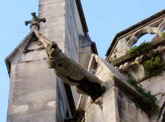 Gro splan d'une gargouille de la cathédrale de Meaux.  photoencounters:    Gargoyle, St. Etienne Cathedral. Meaux, France. Photo by Amber Maitrejean