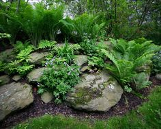 Natural Boulder Garden Patio with Plantings Ideas